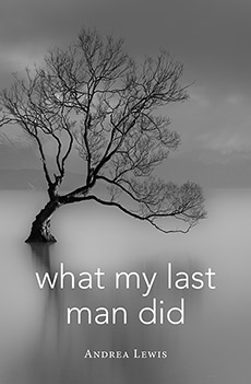 What My Last Man Did by Andrea Lewis Cover